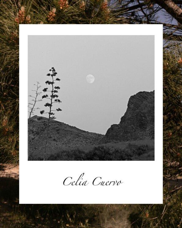 El campo de Celia Cuervo