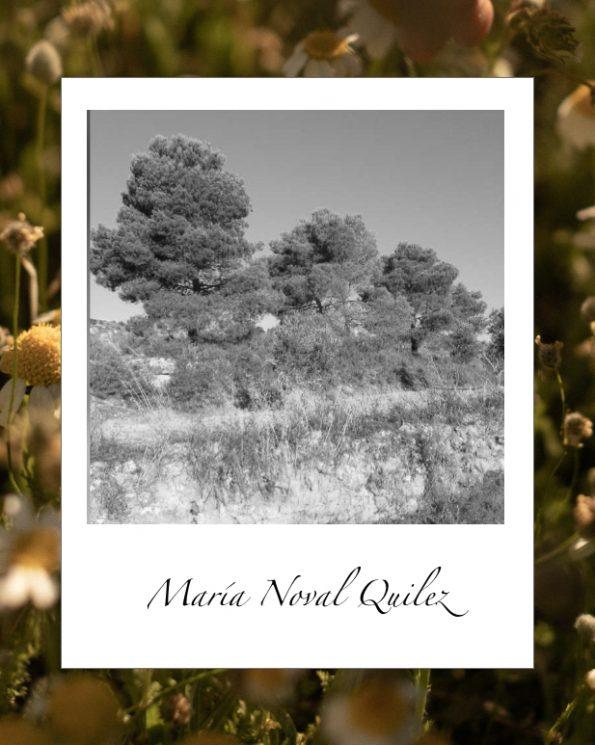 El campo de María Noval